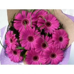 Pink Gerberas Bouquet for Same Day Delivery