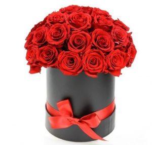Red Rose in Black Hat Box