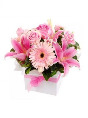 Mother's Day Soft Bliss Box Arrangement