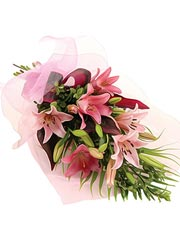 Send Pink Oriental Lilies Online