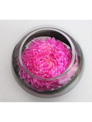 Send Sweet Pink Disbud Melbourne