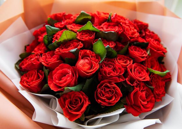 Extra Premium Roses