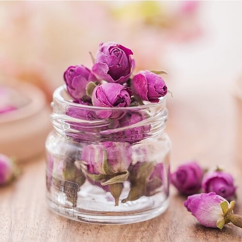 Freeze Drying Jar of Roses Melbourne