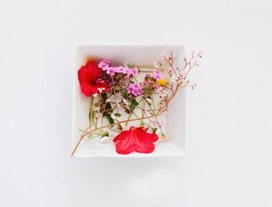 Microwaving Technique to Preserve Flowers Melbourne