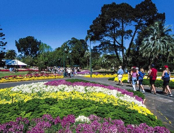 Flower festival in Australia