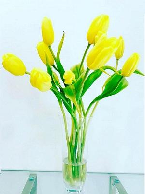 Tulips Flower Online For Valentine's Day