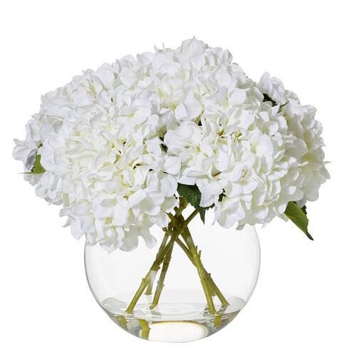 White Hydrangea Delivery Melbourne