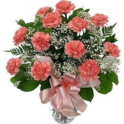 Carnations Flower delivery Melbourne