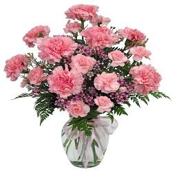 Carnations Florist in Melbourne