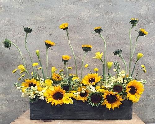 send sunflower