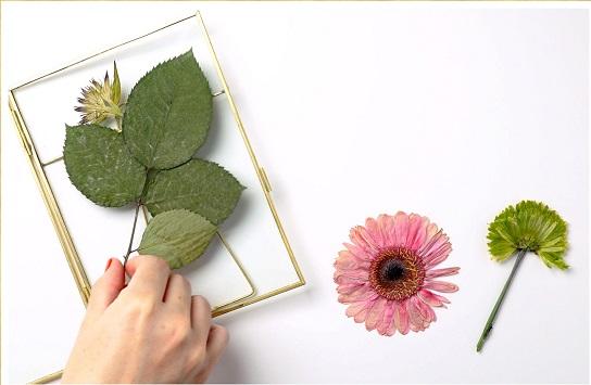 Pressing Technique to preserve Flowers Melbourne