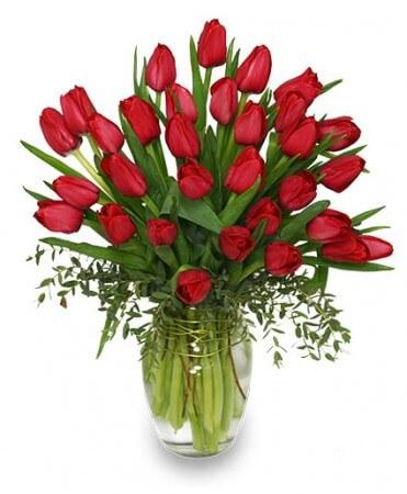 Red Tulip Vase Arrangement Delivery Melbourne