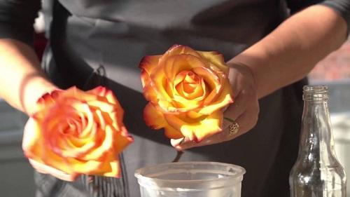 Wax Technique to Preserve Flowers Melbourne