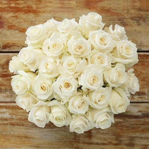 White Roses for Mother's Day Delivery Melbourne